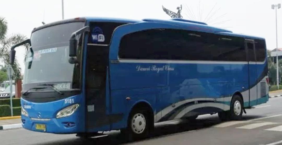 Jajal naik bus ke bandara tanpa biaya tambahan