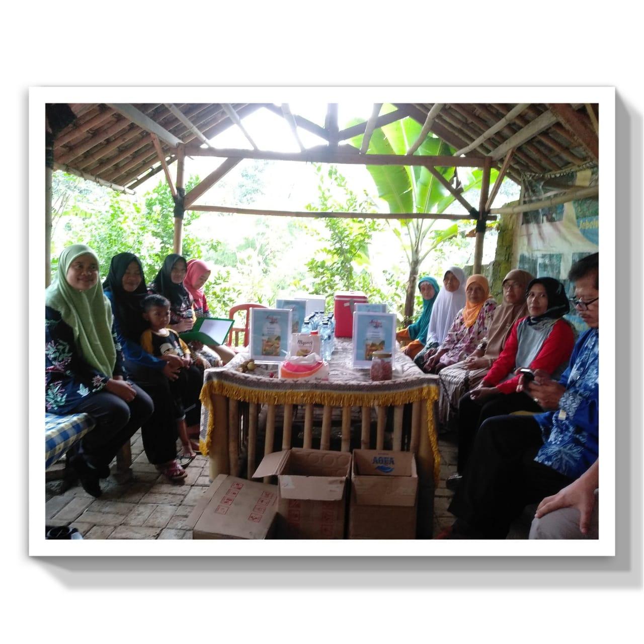 Desa Buntar penghasil Pala di Bogor