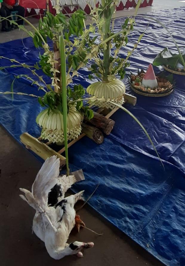 Sepasang kembar mayang dan sepasang bebek hidup akan di Larung.